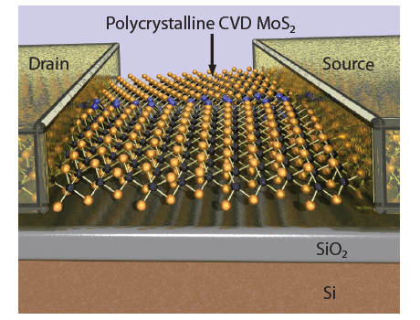 Multi-terminal memtransistors from polycrystalline monolayer molybdenum disulfide
