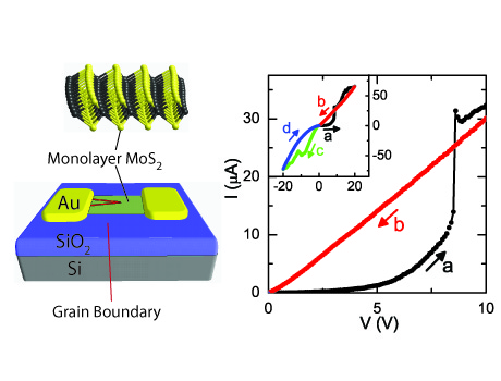 Gate-Tunable Memristive Phenonmena Mediated by Grain Boundaries in Single Layer MoS2